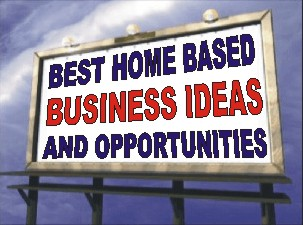 the ds domination home business idea turned into profits with some